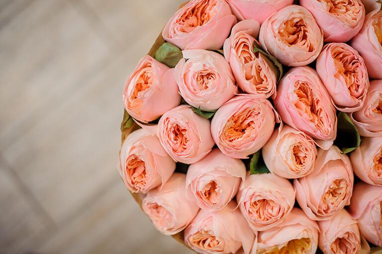 ТОП 109 ідей Що подарувати Дружині на 8 березня +ще 22 подарунка та Поради